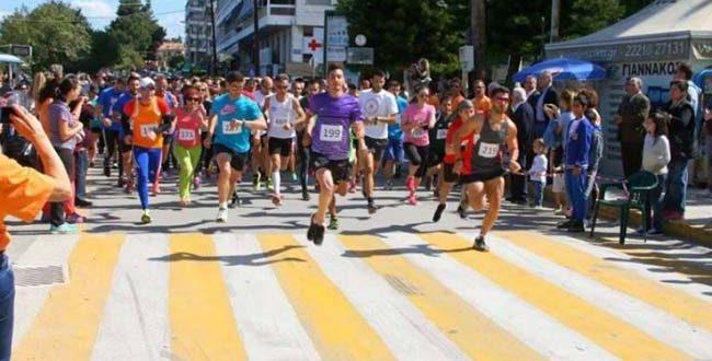 Chalkida Bridges Marathon 2017, Κυριακή 8 Οκτωβρίου