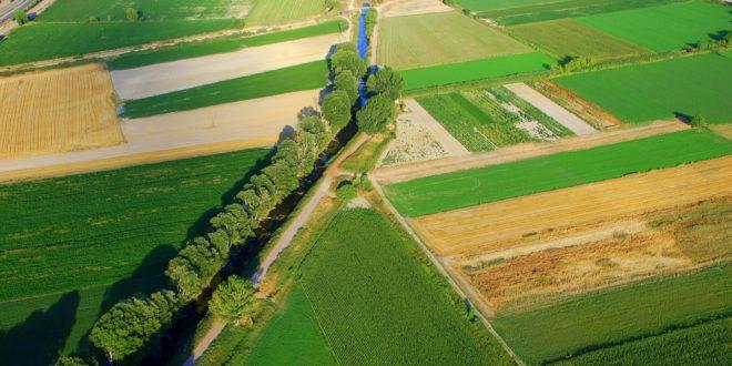 Ενίσχυση των νέων αγροτών της Στερεάς Ελλάδας